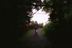 Through the Garden of Eden
