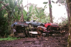 Junkyard grave yard on Hana Road
