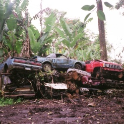 Hawaiian Junk Yard