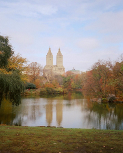 Central Park Relfections pt.2